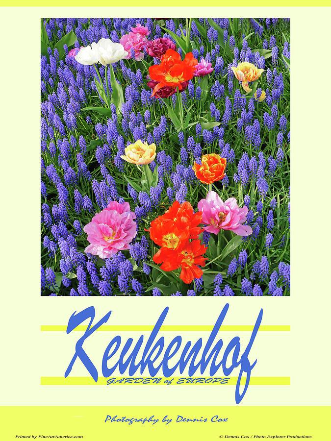 Keukenhof Travel Poster Photograph