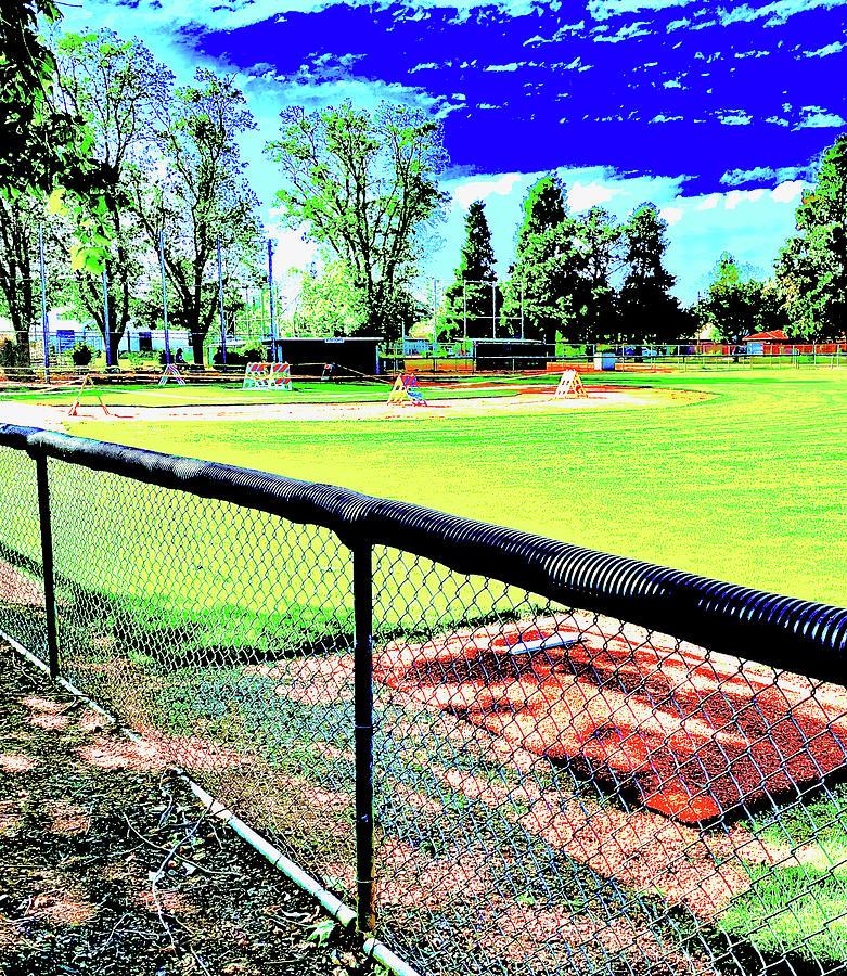 Kids Ballpark Photograph by Scott L Holtslander