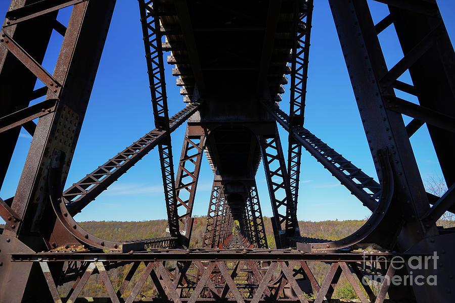 Kinzua Bridge Down Under Photograph