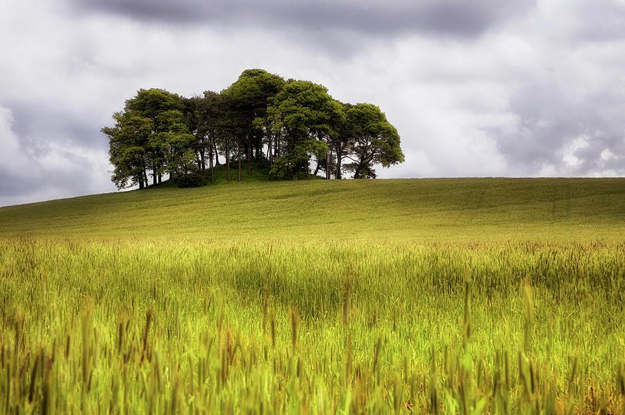 Knowehead Cairn - Coupar Angus - Scotland by Jason Politte