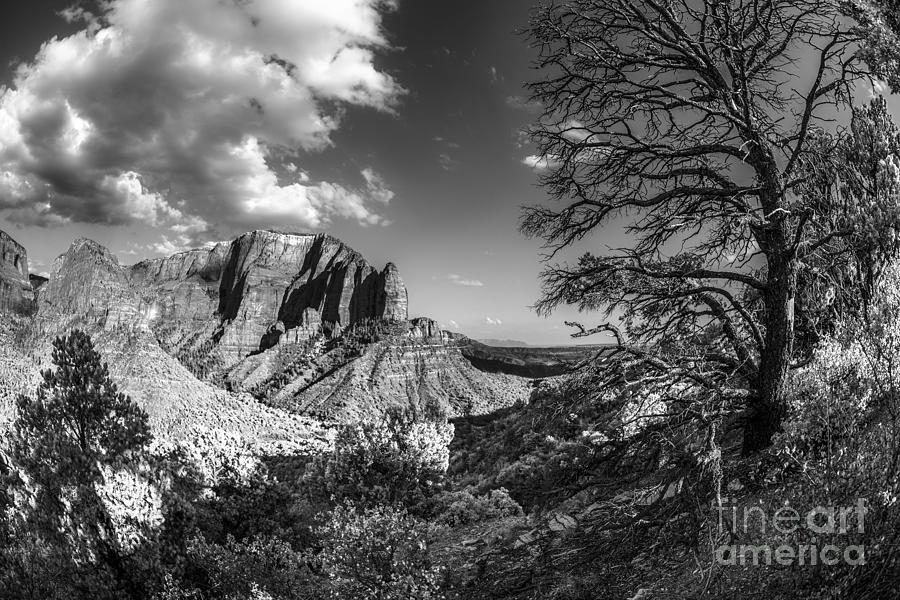 Kolob Canyon Fisheye In Black And White. Photograph