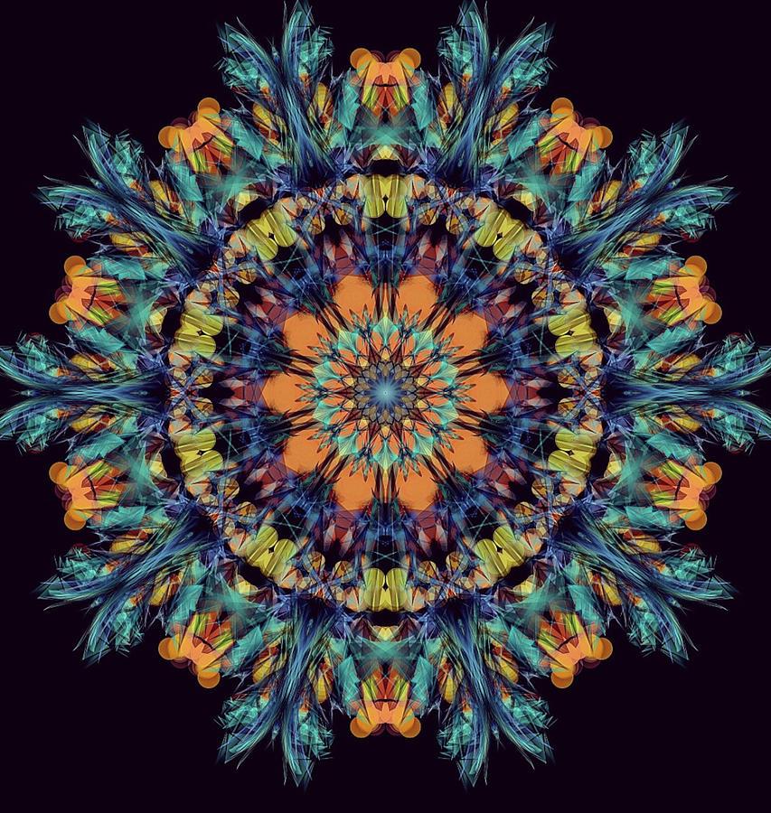 Kosmic Flying Carpet Digital Art