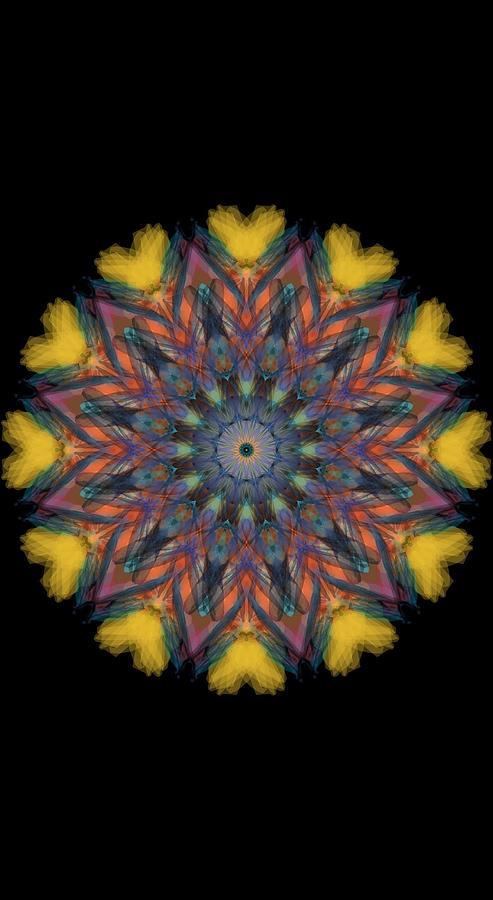 Kosmic Kreation Mandala 4 Digital Art