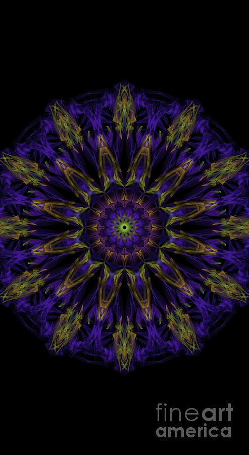 Kosmic Royalty Mandala Digital Art