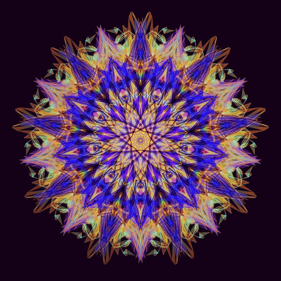 Kosmic Shield Of Royalty Mandala Digital Art