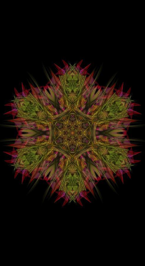 Kosmic Star Mandala 2 Digital Art