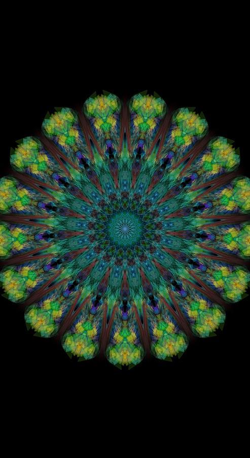 Kosmic Tree Mandala Digital Art