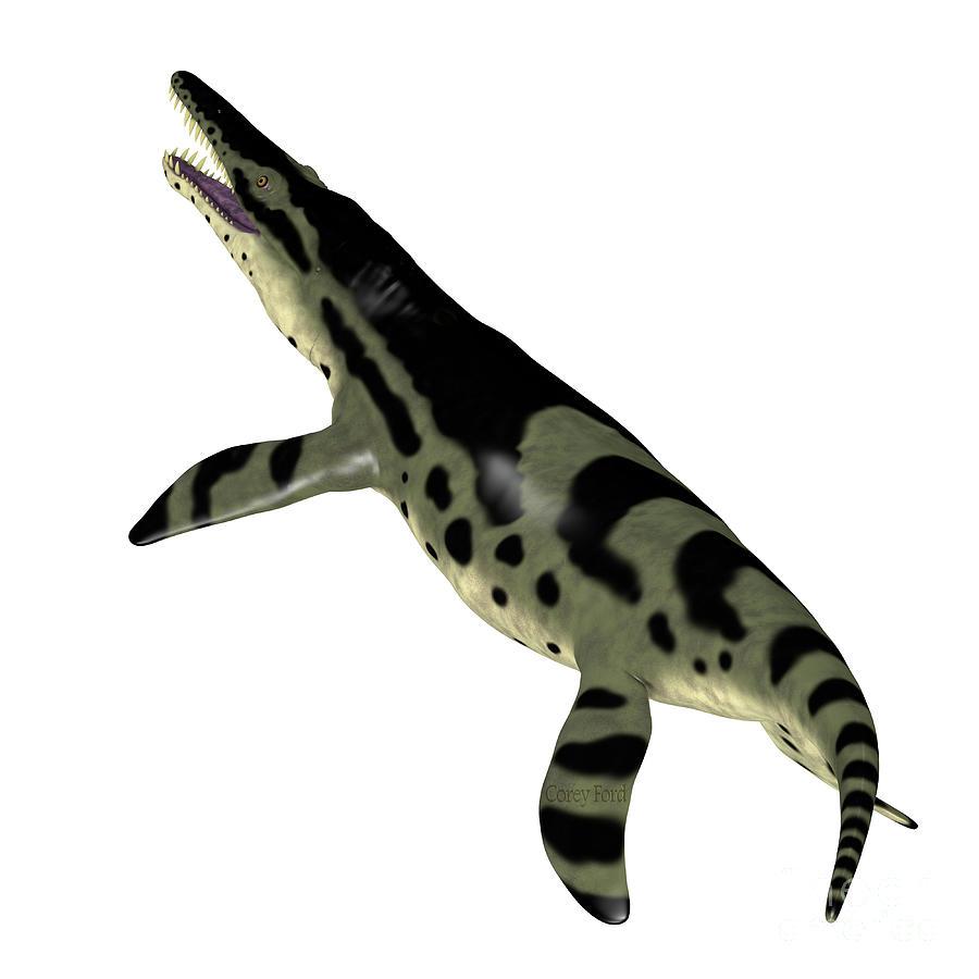 Kronosaurus Digital Art - Kronosaurus Reptile Tail by Corey Ford