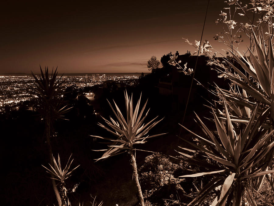 Beverly Hills Photograph - L.A. Noir by Charles Christopher