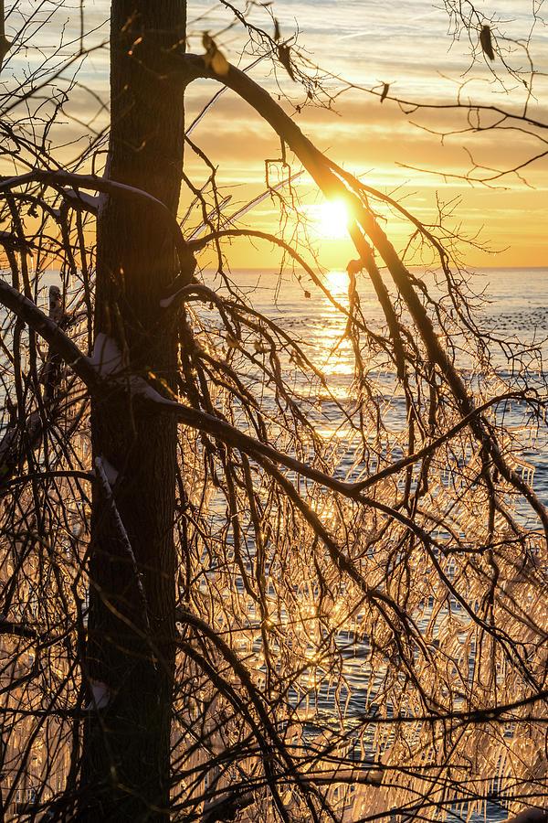 Lacy Ice Screen - Sunrise Sub-Framed with a Filigree of Icicles by Georgia Mizuleva