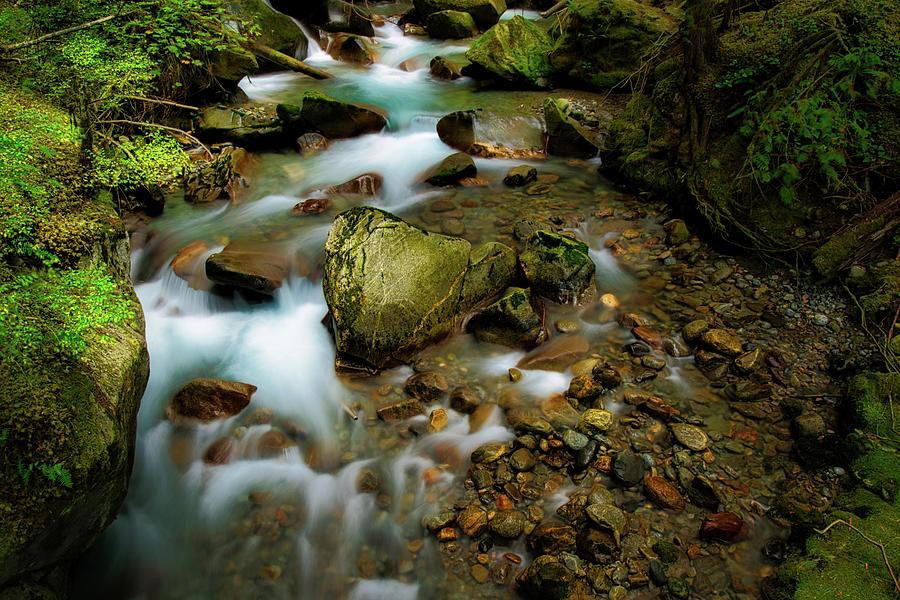 Ladder Creek Photograph
