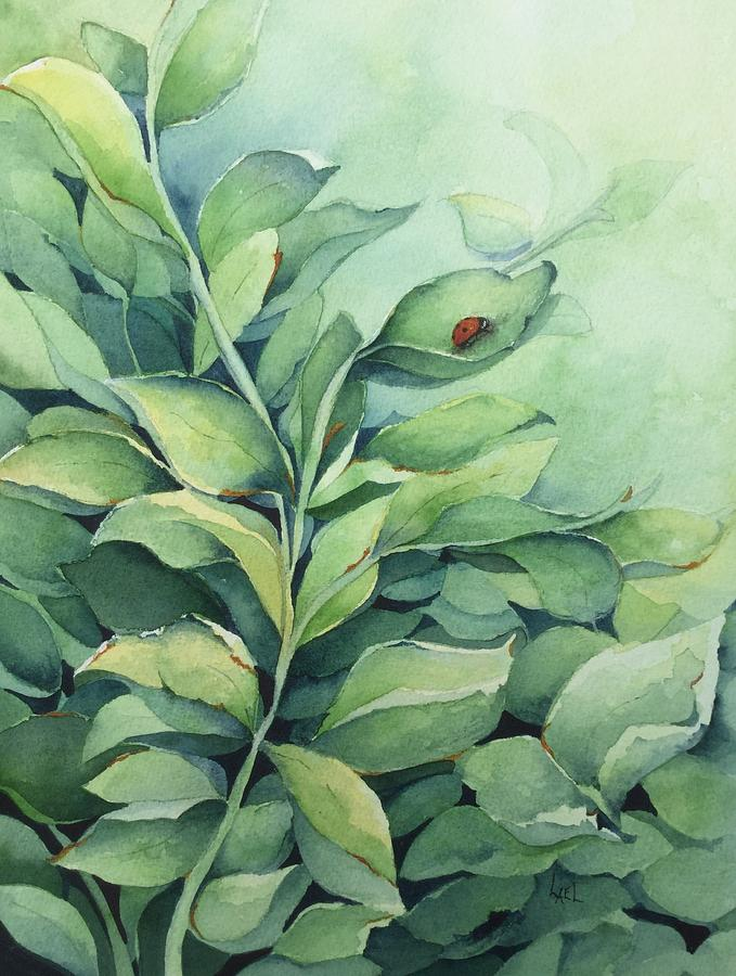 Ladybug by Lael Rutherford