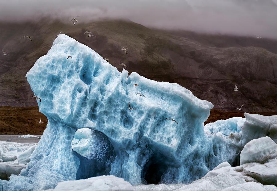 Lagoon Iceberg Photograph
