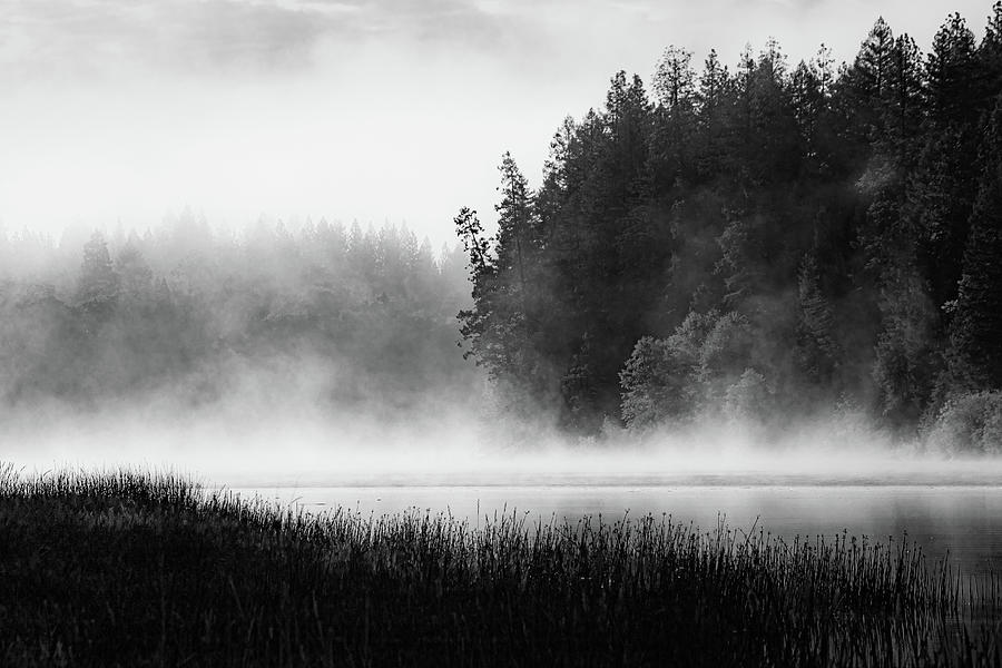 Lake Britton Moods Photograph