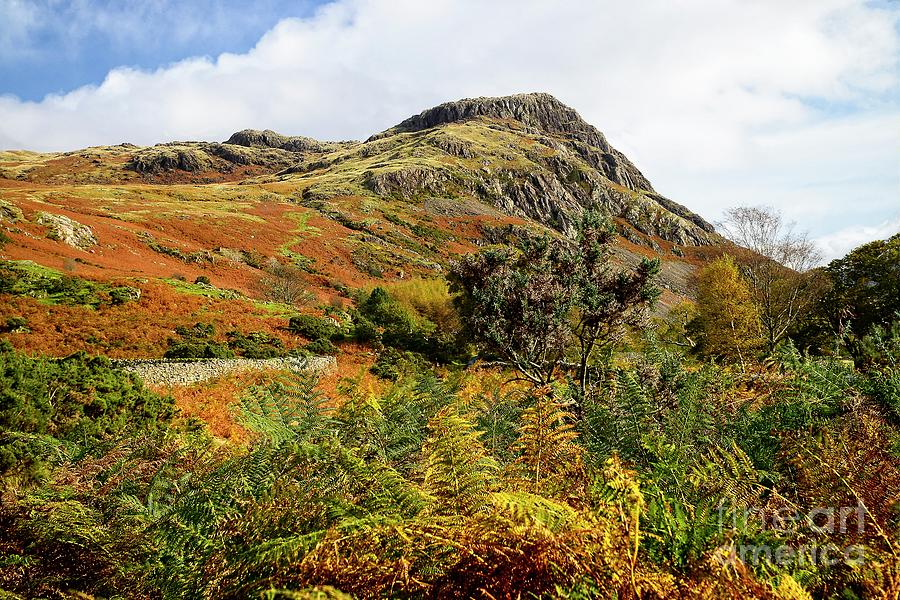 Lake District Autumn by Martyn Arnold