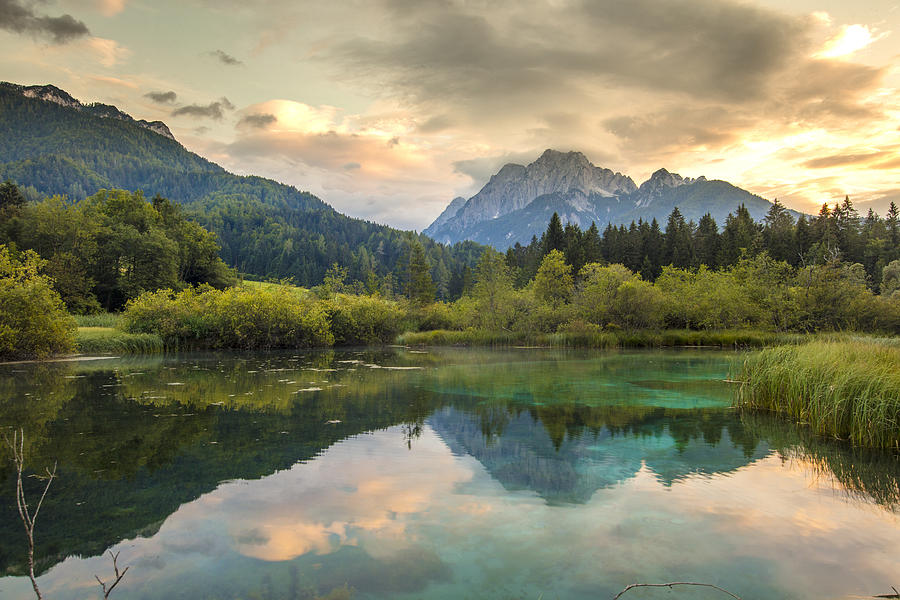 Lake in Zelenci Springs,Upper Carniola,Slovenia Photograph by SimonSkafar
