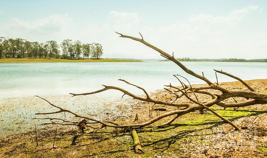 Panorama Photograph - Lake Samsonvale by Jorgo Photography - Wall Art Gallery