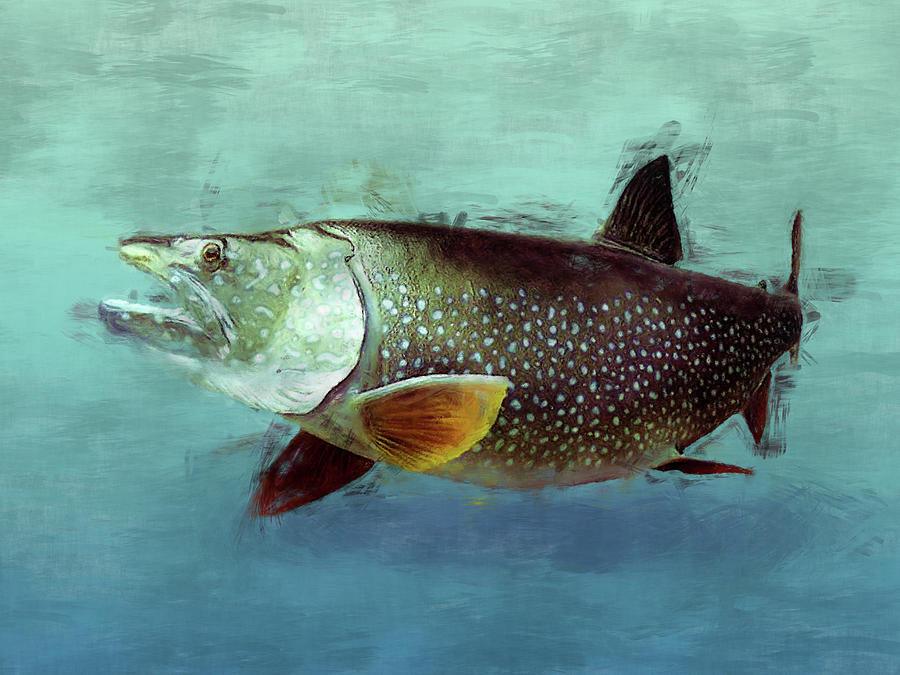 Lake Trout - Fish Painting by Flo Karp