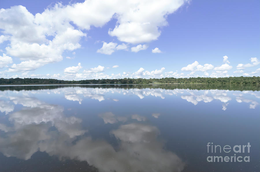 Florida Photograph - Lake Wauburg, Florida by Felix Lai