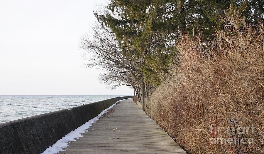 Lakeshore Avenue Photograph