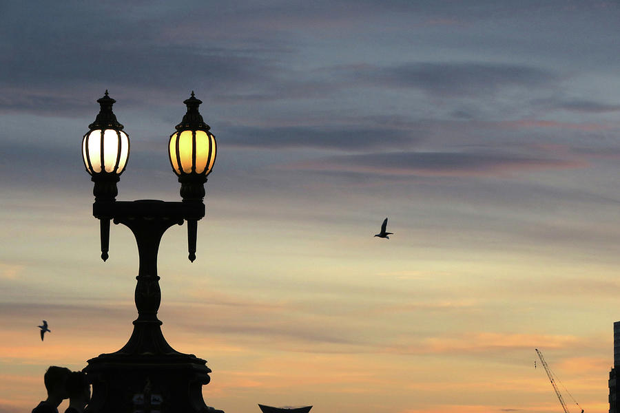 Lamps Photograph - Lamps at dusk by Leigh Henningham