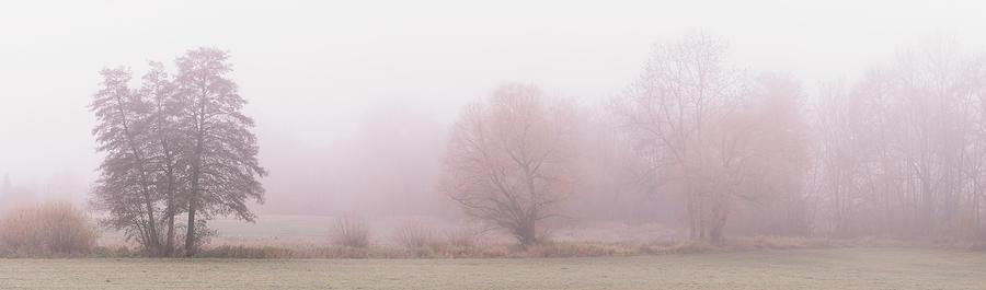 Landscape In Mist Photograph