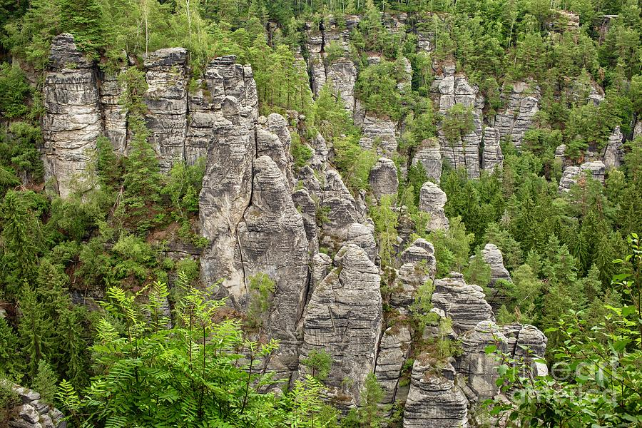 Landscape of beautiful rock formations in south Germany by Patricia Hofmeester