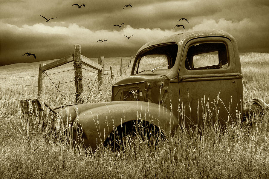 Languishing on the Back Forty in Sepia Tone by Randall Nyhof