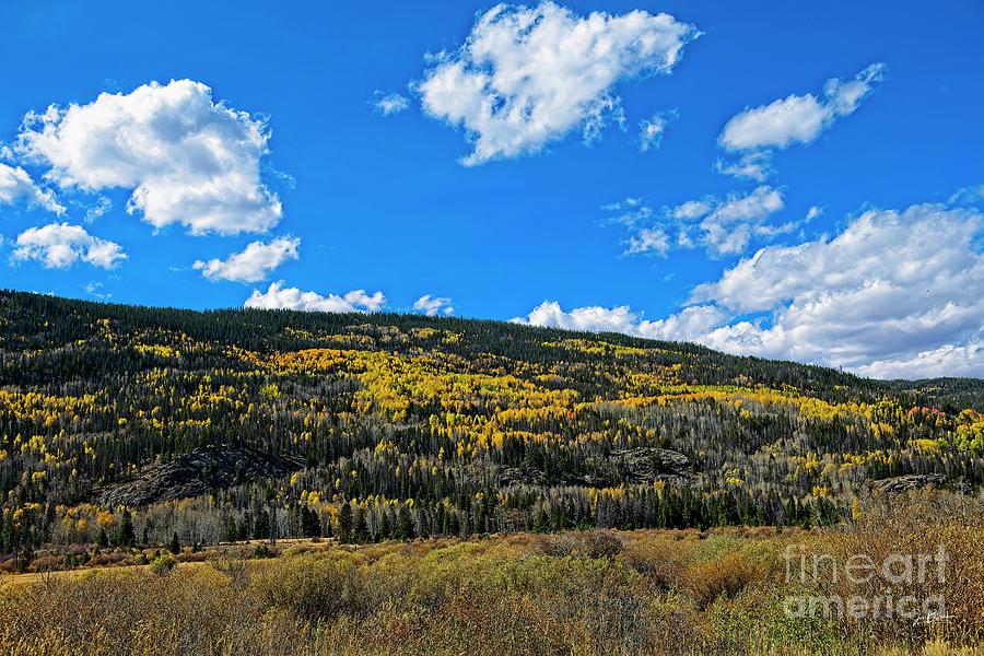 Laramie River Autumn by Jon Burch Photography
