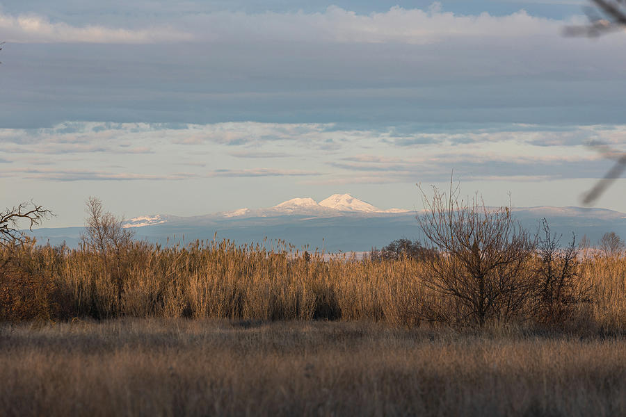 Mountains Photograph - Lassen Peak view by John Heywood