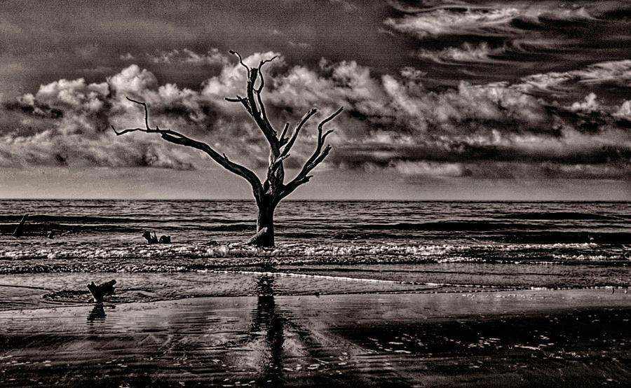Beach Photograph - Last Man Standing by Jim Cook