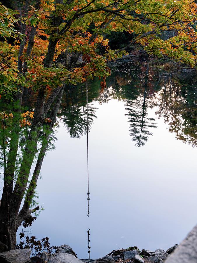 Last Swing Of Autumn Photograph
