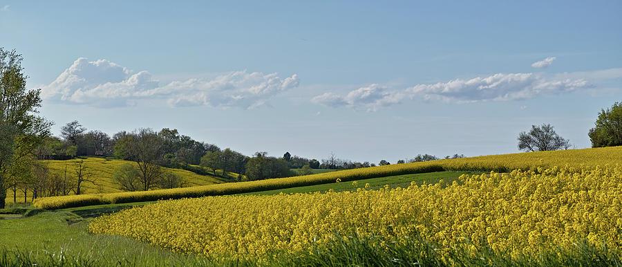 Landscape Photograph -  Lauragais Color by Karine GADRE