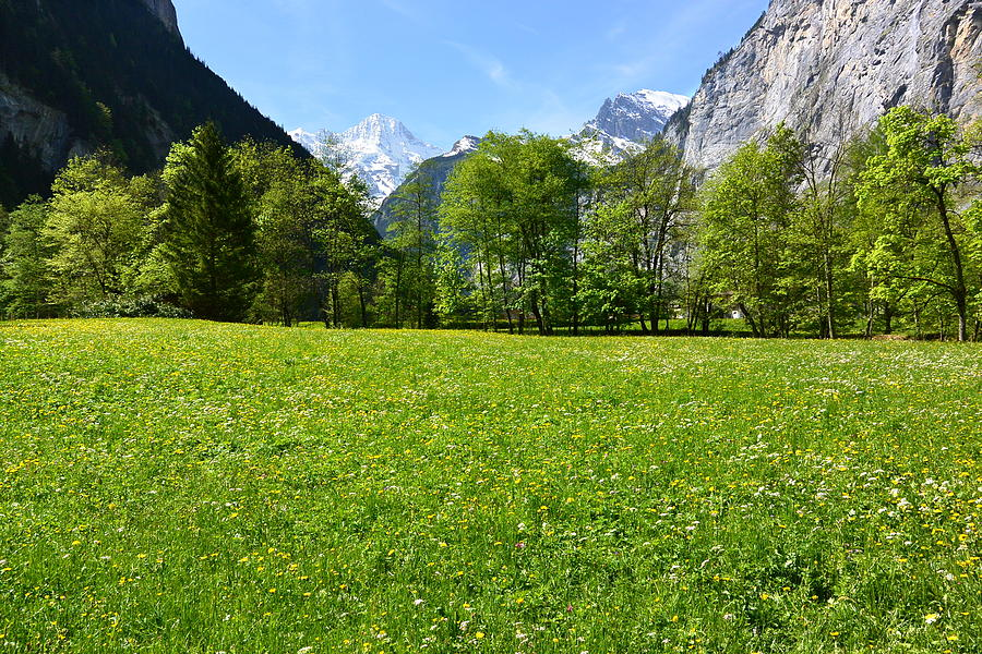 Switzerland Photograph - Lauterbrunnen Valley by Two Small Potatoes