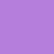 Lavender Blossom Digital Art