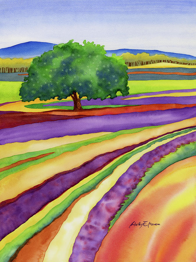 Lavender Painting - Lavender Field by Hailey E Herrera