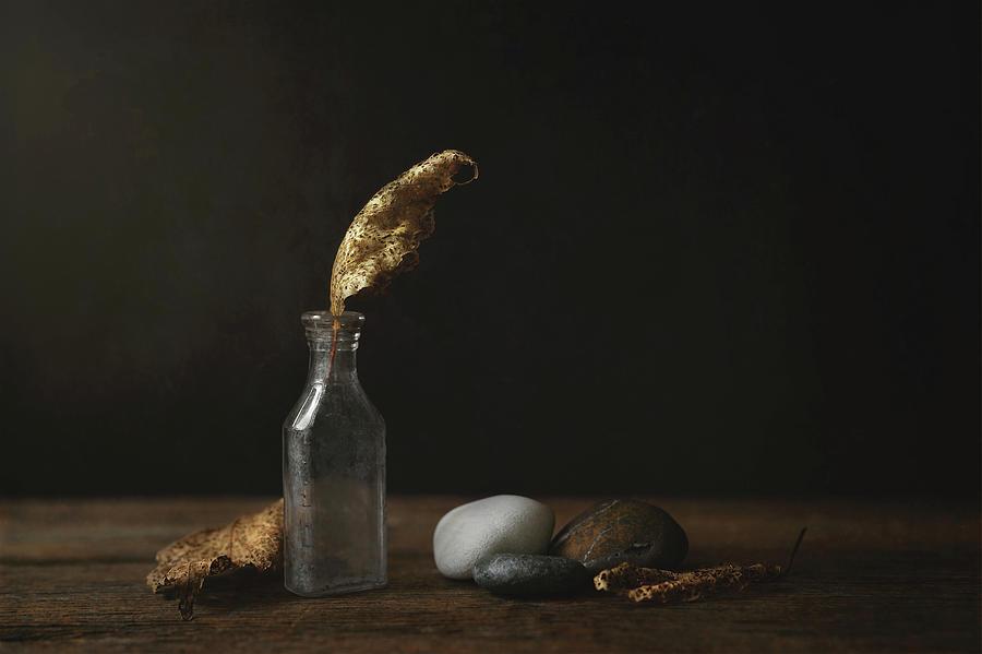 Still Life Photograph - Leaf Bottle Rocks by Scott Norris