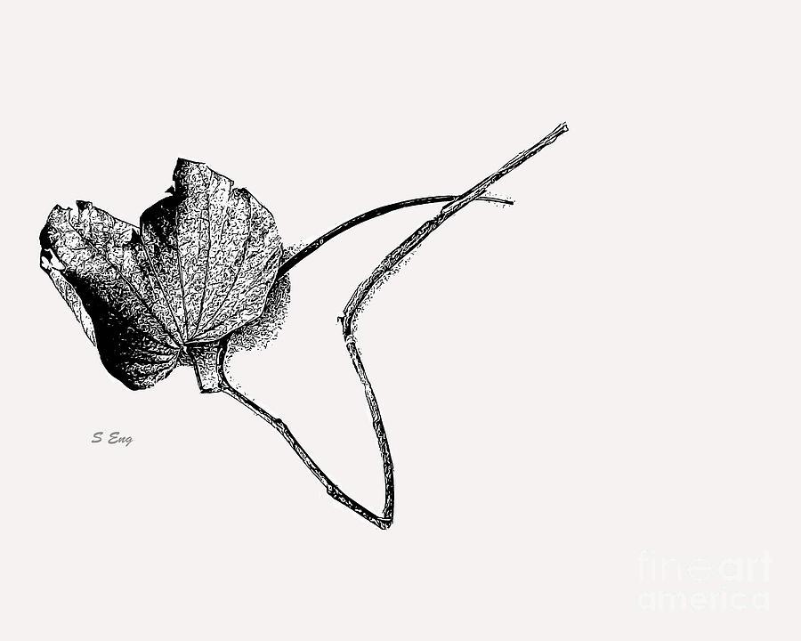 Leaf Pattern Sketch 300 by Sharon Williams Eng