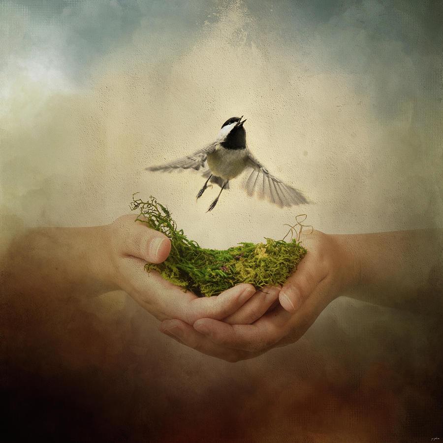 Leap of Faith Chickadee A Bird In The Hand by Jai Johnson