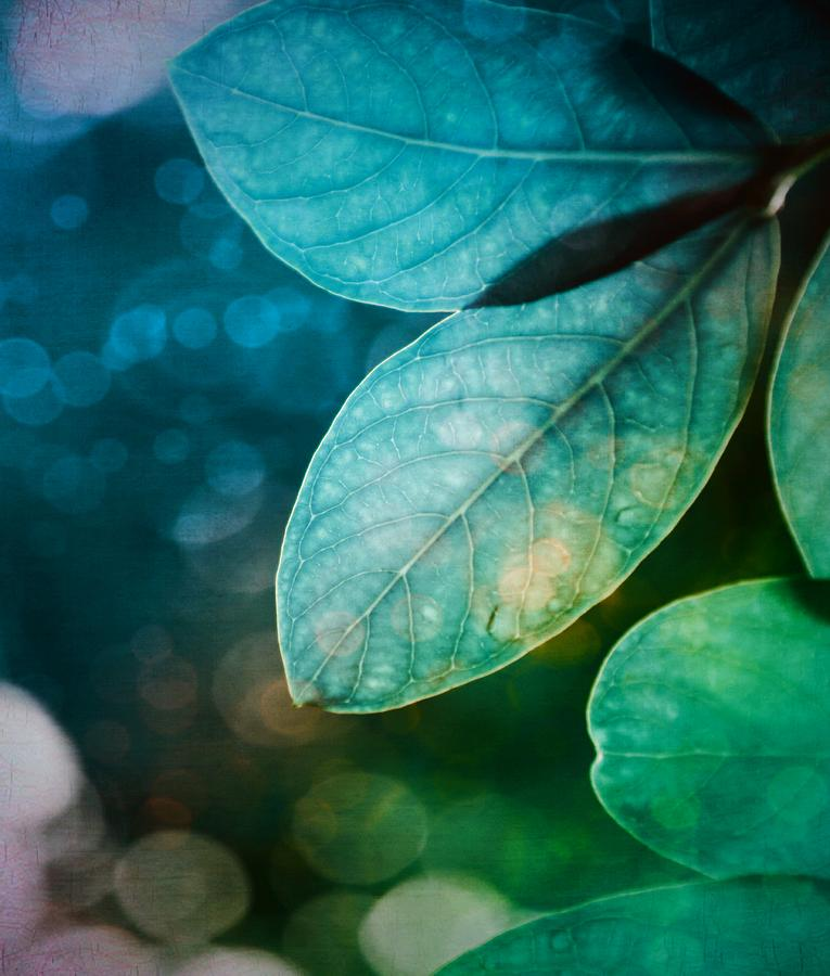 Leaves - Blueberry Blue and Lime Green by Marianna Mills