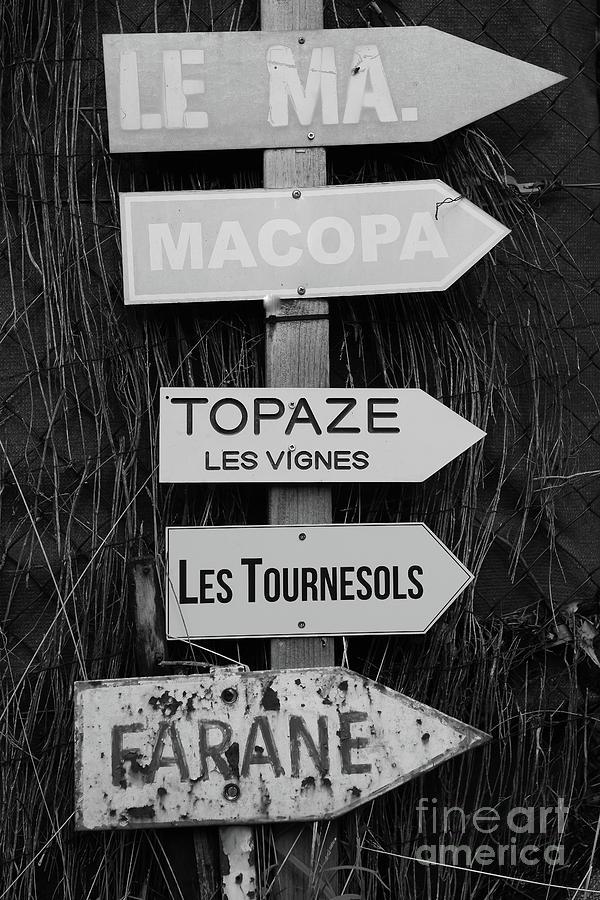 Les Tournesols Saint Tropez by Tom Vandenhende