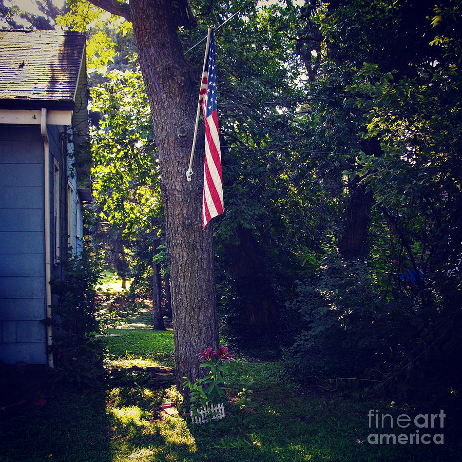 American Flag Photograph - Life and Liberty by Frank J Casella