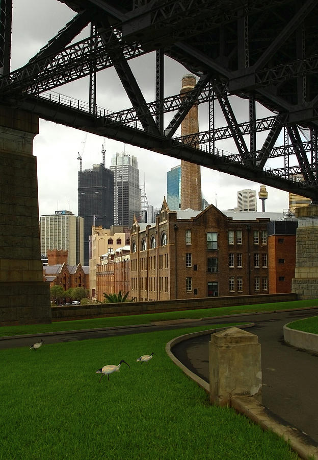 Sydney Photograph - Life From Beneath the Bridge - Sydney by Siene Browne