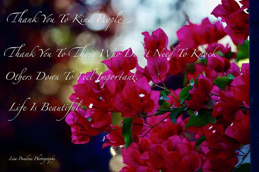 Life Is Beautiful  by Lisa Pandone