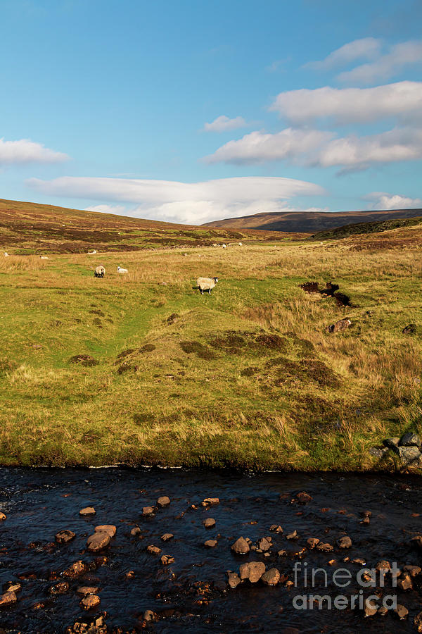 Life On Skye Photograph