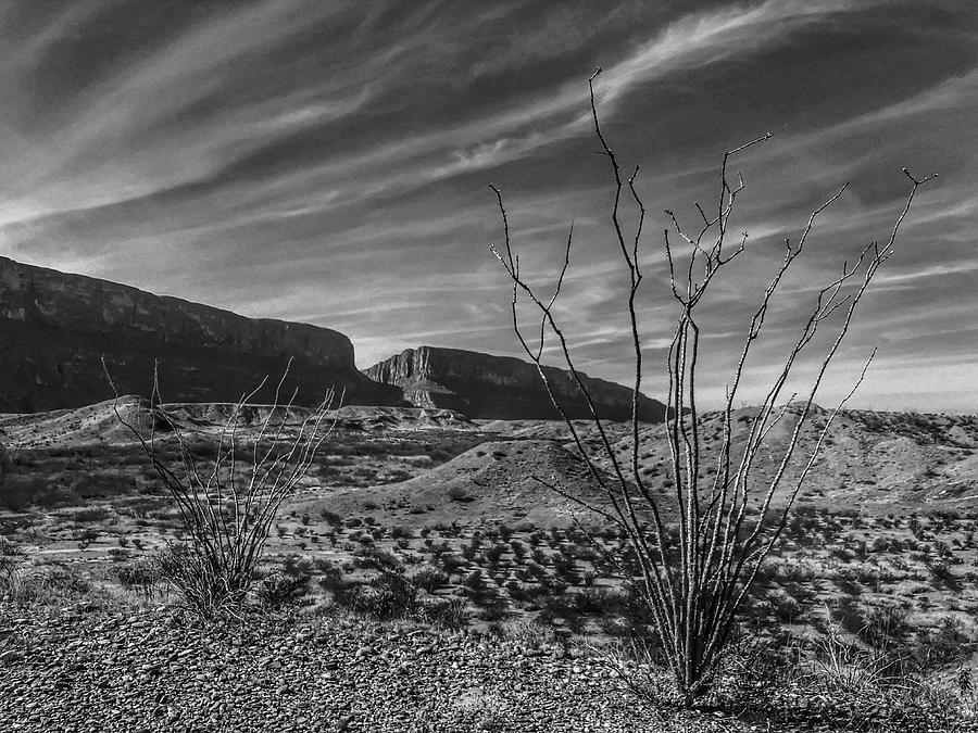 Big Bend Photograph - Life on the Border by George Buxbaum