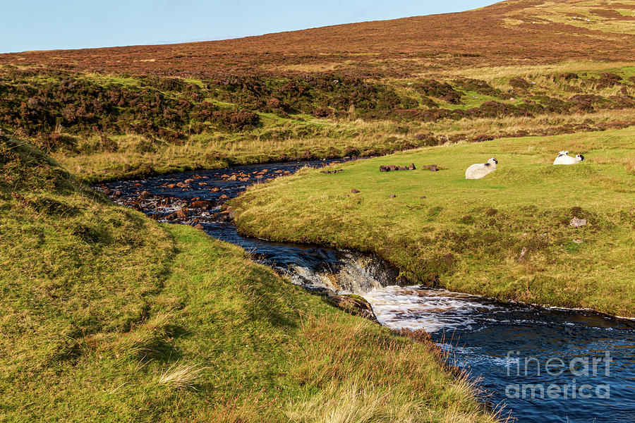 Life On The Isle Of Skye Photograph