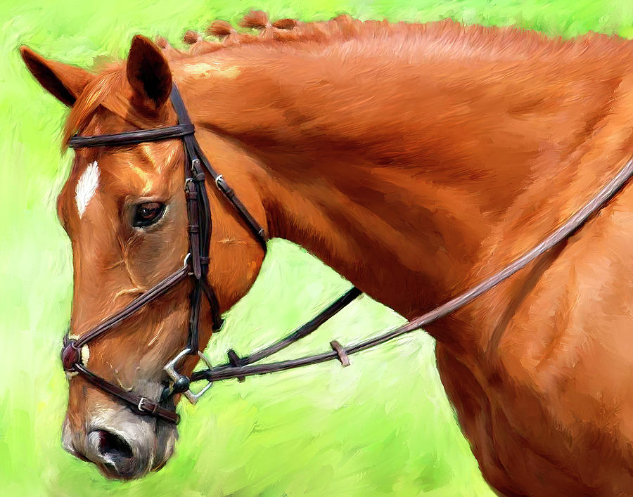 Light Brown Horse Portrait by Portraits By NC