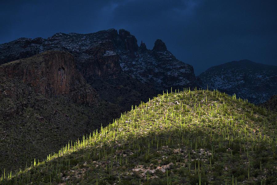 Light Painted Catalina Mountains  by Chance Kafka