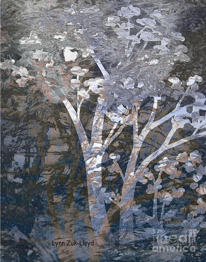 Trees Digital Art - Lighted Tree in Forest by Lynn Zuk-Lloyd
